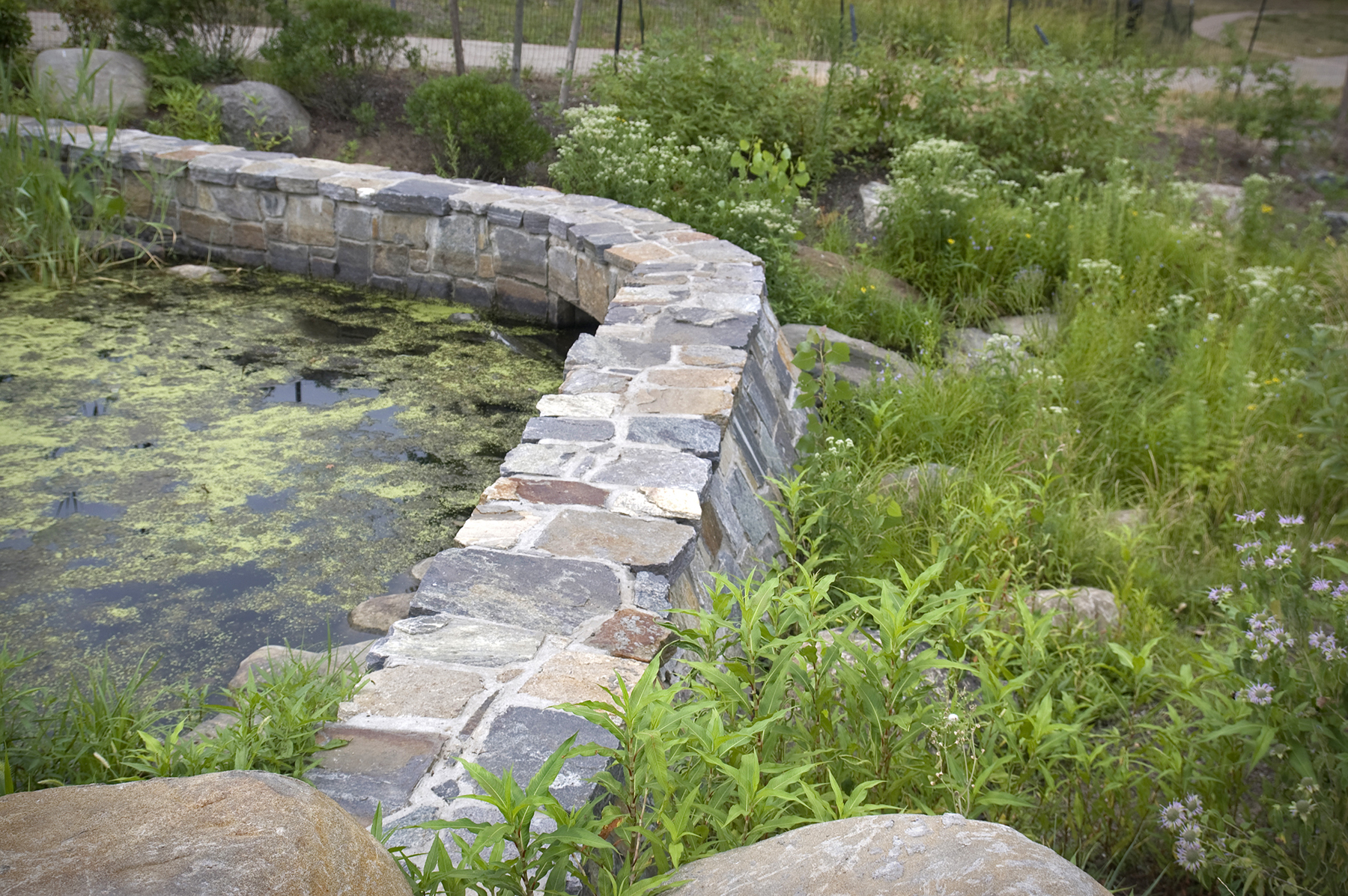 Stone used for retaining wall for pond in park