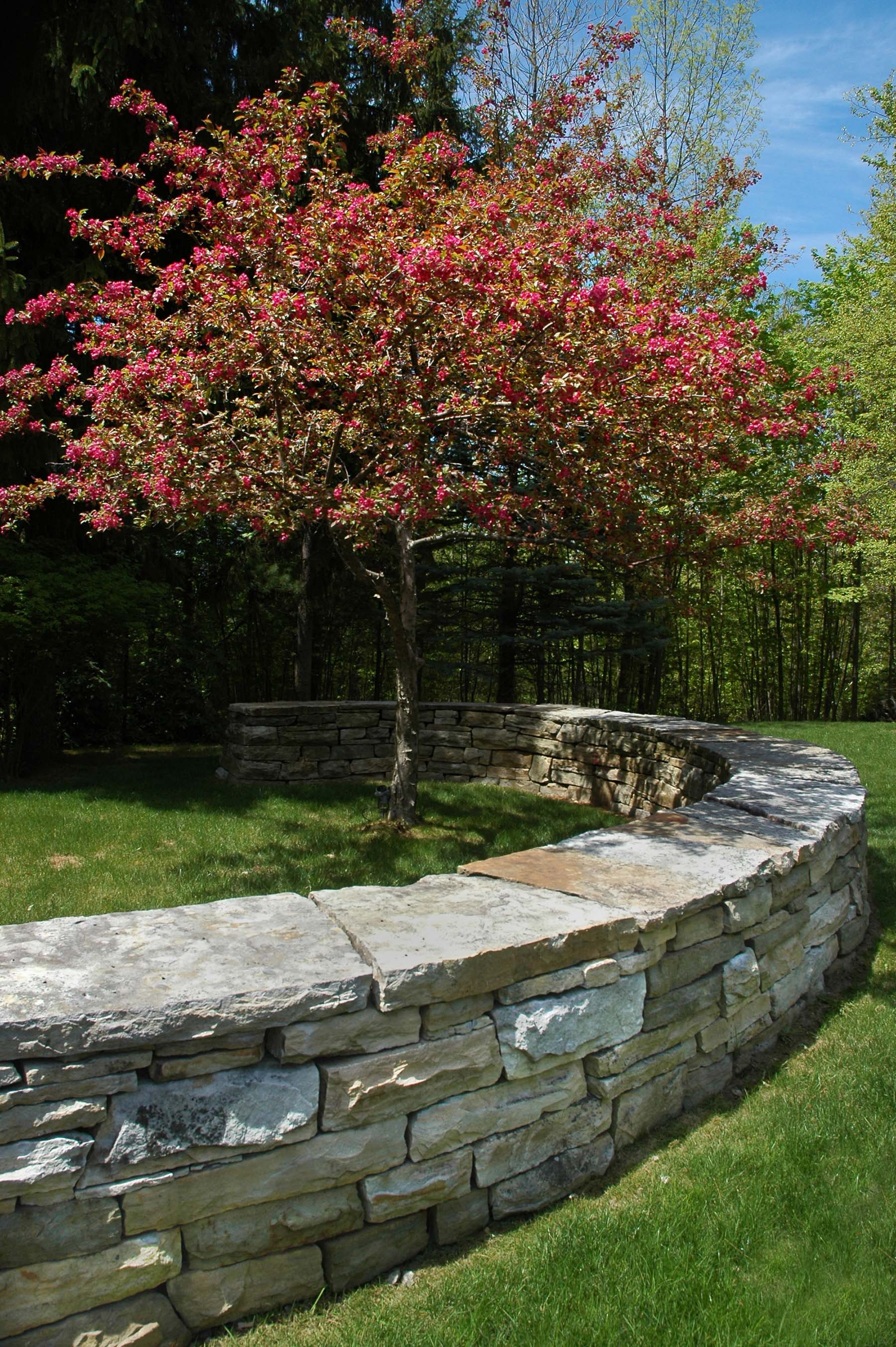 South Bay Quartzite natural stone wall in park