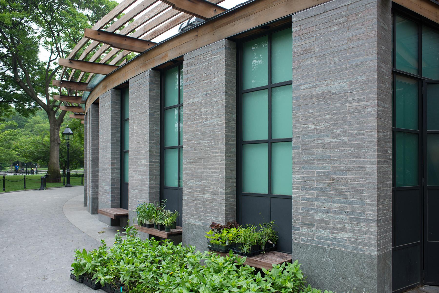 sidewalk plants and building